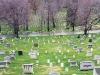 cimitiru-arlington