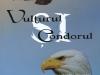 vulturul-si-condorul