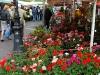 Cours-Saleya-Market