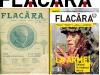 FLACARA banner centenar doua coperti